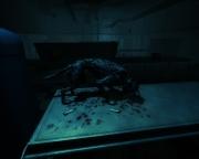 Cryostasis: Sleep of Reason: Screenshot - Cryostasis: Sleep of Reason
