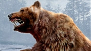 Cabela's Dangerous Hunts 2011: Erste Bilder zum Jagdspiel