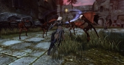 Dungeons & Dragons: Neverwinter: Neue Screens zum Fantasy MMO.