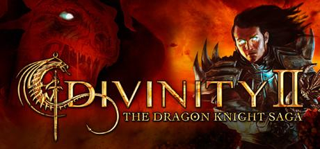 Divinity 2: The Dragon Knight Saga - Divinity 2: The Dragon Knight Saga