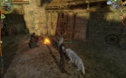 The Witcher: Bild aus der Geralts Companion Wolf Mod