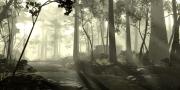 Tomb Raider: Bildmaterial zum Multiplayer-Kartenpack