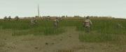 Combat Mission: Battle for Normandy: 20 neue Screenshots zeigen die The Road to Montebourg