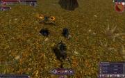 The Chronicles of Spellborn: Screenshot zu den neuen Komfort-Funktionen.