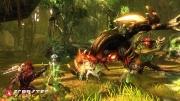 RaiderZ: Offizieller Screen zum kommenden Free2Play Titel Raiderz.