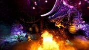 Trine 2: Screen zum Action Adventure.