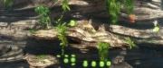 Sine Mora: Screen aus dem beeindruckenden Horizontal-Shooter.