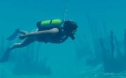 World of Diving: Erste Screens zum Tauchvergnügen.