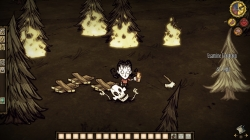 Don't Starve: Screeshots