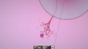 Eufloria - Limited Edition: Screenshots zum Artikel