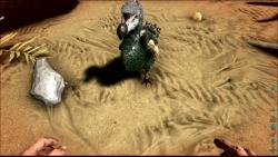 Ark: Survival Evolved: Screenshots zum Artikel