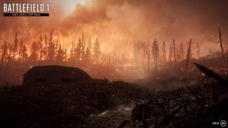 Battlefield 1: They Shall Not Pass - Verdun Höhen