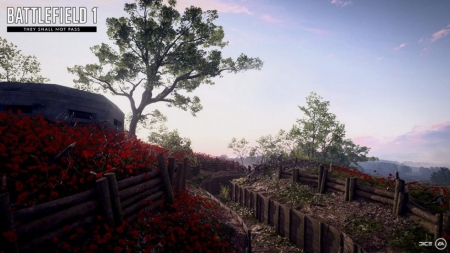 Battlefield 1: They Shall Not Pass - Bruch