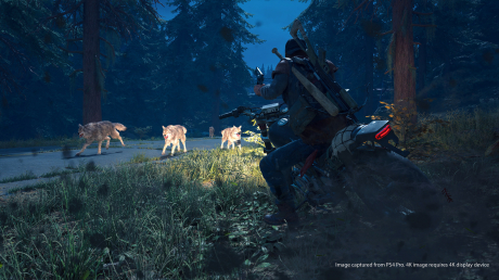 Days Gone: Official Screenshots Juni 2018