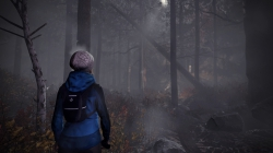 Through the Woods: Screen zum Horror Adventure.