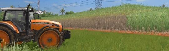 Landwirtschafts-Simulator 17 Platinum Addon - Auf geht es nach Südamerika