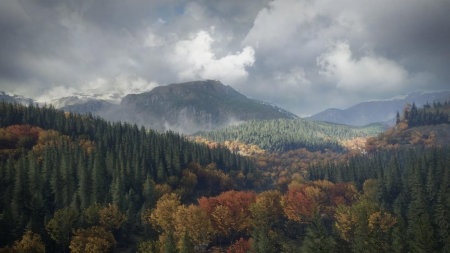 theHunter: Call of the Wild - Release-Trailer veröffentlicht