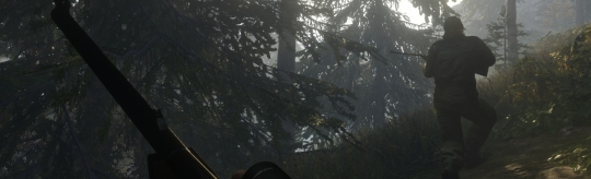 theHunter: Call of the Wild - Ick glaub ick steh im Wald