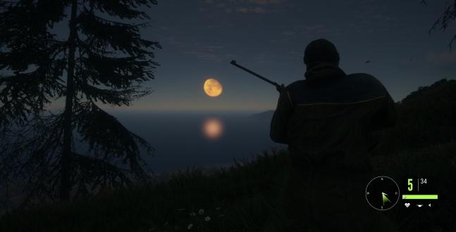 PC Test - TheHunter: Call of the Wild Wenn Unvollkommenheit und mangelnde Fehlerfreiheit eine so überzeugende Jagdsimulation die Top Wertung kostet.