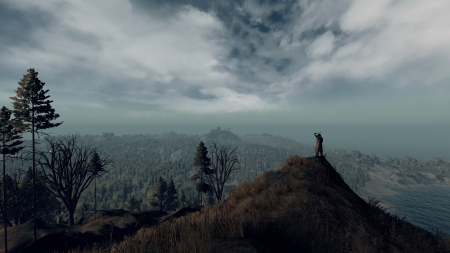 Life is Feudal: MMO: Official Screenshots