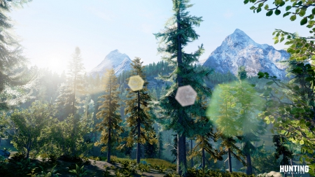 Hunting Simulator: Screen zum Spiel Hunting Simulator.