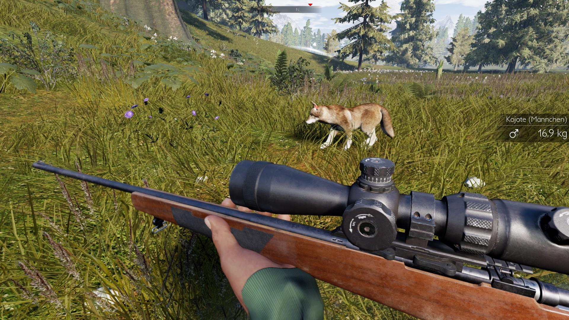 Zielfernrohr Mit Entfernungsmesser Rätsel : Test zum spiel hunting simulator die lustige jagd ist eröffnet