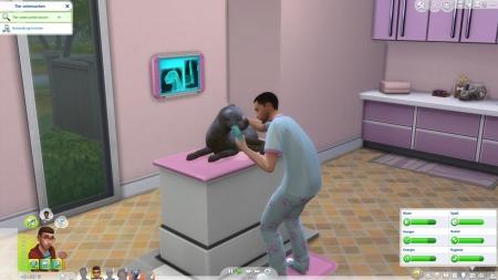 Die Sims 4: Hunde & Katzen: Screenshots aus dem Spiel