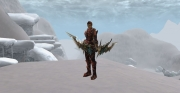 Lineage II: Screenshot aus dem MMORPG