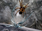 Deadly Creatures: Screenshot aus Deadly Creatures