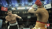 Don King Boxing: Screenshot aus Don King Boxing