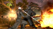 Tenchu 4: Shadow Assassins: Screenshot - Tenchu: Shadow Assassins