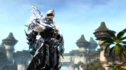 Guild Wars 2: ArenaNet enth�llt die Widerg�nger-Spezialisierung Herold