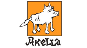 Publisher Akella Logo