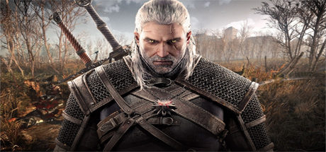 The Witcher (8)