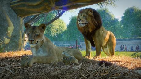 Planet Zoo - Entwickler zeigen erstes Gameplay-Material und geben Release Date bekannt