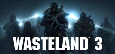 Wasteland 3 - Wasteland 3