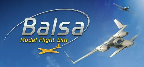 BALSA Model Flight Simulator - BALSA Model Flight Simulator