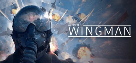 Project Wingman - Project Wingman