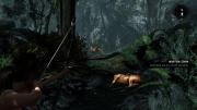Tomb Raider: Definitive Edition: Ingame Screenshots PS4 - Bericht