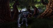 Dungeons & Dragons Online: Neue Screenshot zum MMO