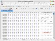 Rainbow Six: Vegas 2: In Rainbow Six: Vegas 2 wurde der Name eines Crackers im Patch-Hexcode gefunden